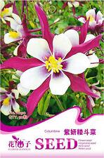 Original Package 50 Purple Columbine Seeds Aquilegia Vulgaris Flowers A190