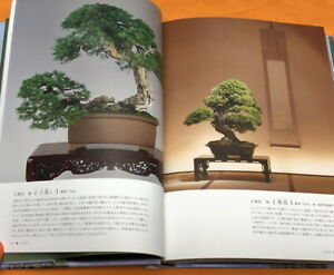 BONSAI Appreciation knowledge of traditional garden plants Japanese Book #1162