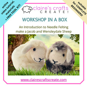 *NEW*  Workshop in a Box - Introduction to Needle Felting - Jacob and Wensleydal