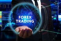 FOREX SECRETS EBOOKS ebook pdf master resell right free shipping e book
