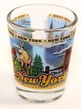 NEW YORK STATE WRAPAROUND SHOT GLASS SHOTGLASS