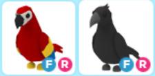 Adopt me PARROT FR + CROW FR (Fly, Ride) -  ITEM VIRTUAL