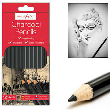 12* Charcoal Pencils Work of Art Long lasting/Blend able Drawing Pencils Sketch