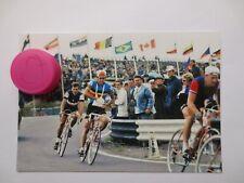 repro wielerfoto 1971  team flandria  jean pierre monsere