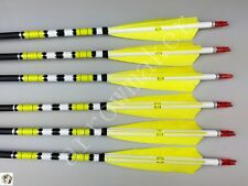 "6PK 31"" Carbon arrows Turkey Feather Spine 500 Hunting Archery Compound Recurve"
