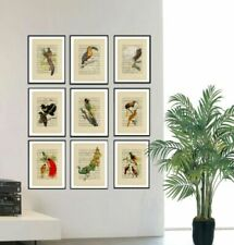 Paper Vintage Birds Art Prints
