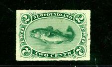 NEWFOUNDLAND--Individual Stamp Scott #38 Cat. Value $200.00