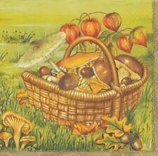 4 TOVAGLIOLI-funghi-basket with Mushrooms