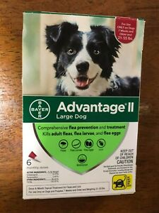 Advantage II Flea Control for Large Dogs 21-55 lbs, 6 Month - FREE SHIP
