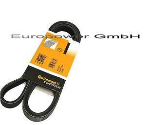 Conti V-Ribbed Belt Renault 25 Mitsubishi Carisma Colt Galant Pajero 1.6 1.8