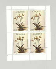 Guyanese Olympics Stamps