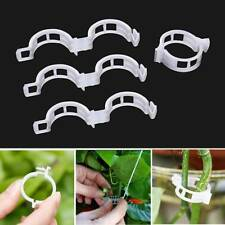 100Pcs Garden Vegetables Tomato Vine Stalks Grow Upright Support Plant Clips
