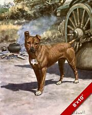 The Fearless Staffordshire Bull Terrier Pet Dog Art Painting Print Real Canvas