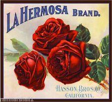 Riverside La Hermosa Red Roses Flowers Orange Citrus Fruit Crate Label Art Print