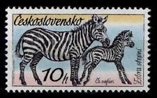 Zebras. Steppenzebra. 1W. Tschechoslowakei 1976