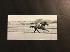 DR FAGER  Photo Horse Racing 1968 ARLINGTON PARK WORLD RECORD