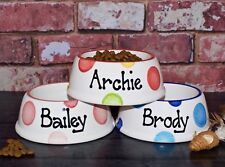 small slanted dog bowl hand painted personalised ceramic dog food bowl cat dish