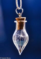 925 sterling silver Make a wish real dandelion seeds pendant necklace teardrop