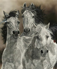 The Defiant by Judy Larson Horses Limited Edition Print 21x25.25