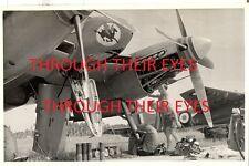 CD OF ORIGINAL PHOTO ALBUM RAF TENGAH RAF BUTTERWORTH 1950s 33/45/ 81 SQUADRONS