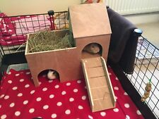 Two Tiered Guinea Pig Town House/Shelter/Hideout