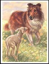 ROUGH COLLIE AND LAMB LOVELY VINTAGE STYLE DOG PRINT POSTER