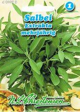 490673 Salbei Extrakta mehrjährig Kräuter Saatgut Gewürz