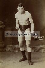 rp02337 - Boxer - Joe Sharkey - photo 6x4