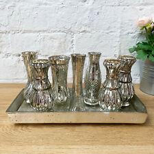 S/8 Silver Mercury Glass Home Decorative Flower Wedding Table Ensemble Vase Set