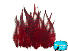 1 Dozen - SHORT RED Grizzly Rooster Hair Extension Feathers