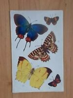 VINTAGE POSTCARD - BUTTERFLIES AND MOTHS - TUCK AQUARETTE