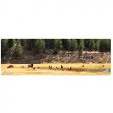 CERUS GEAR ELK CALL OF WILD FULL COLOR 12X36IN MAT