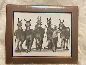 Dave McCamon Pencil Series Print Picture THE AMISH WAY- MULES -Signed-No Frame