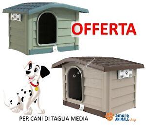 Cuccia per Cani di Taglia MEDIA in Resina da esterno  Bungalow BEIGE / VERDE