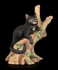 Hexen Katze - Onyx auf Baum - Nemesis Now schwarzes Kätzchen Dekostatue