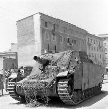 WW2 Photo WWII German Sturmpanzer Brummbar Rome Italy 1944  World War Two / 1424
