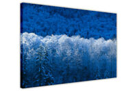 BLUE WINTER FOREST CANVAS PICTURES WALL ART PRINTS FRAMED LANDSCAPE POSTERS