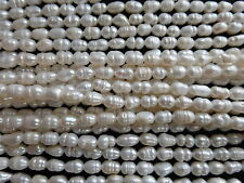 "Ivory Cream Freshwater Rice Pearl Beads 6mm x 4mm - 14"" Strand (Approx 49 Beads)"
