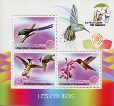 Madagascar 2017 MNH Hummingbirds 3v M/S Colibris Hummingbird Birds Stamps