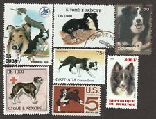 Border Collie * Int'l Dog Stamp Art Collection* Unique Gift Idea *