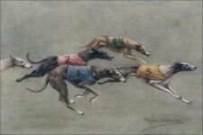 Greyhound Dog Races 1920's Persis Kirmse Art - 8 Large New Blank Note Cards