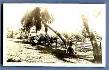 Hawaii, Honolulu, Girl Scout Camp  Vintage silver print.  Tirage argentique