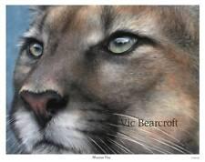 'Mountain View'. Limited Edition Mountain Lion Print.