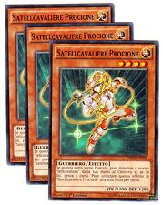 Set 3X SATELLCAVALIERE PROCIONE NECH-IT028 Comune in Italiano YUGIOH