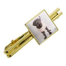 Neapolitan Mastiff Dog Nifty Sweater Square Tie Bar Clip Clasp Silver or Gold