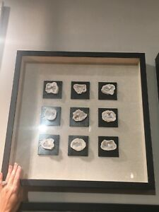 "GEODE NATURAL GEODES STONE UNDER GLASS XXL 22"" SHADOW BOX  WALL ART UTTERMOST"