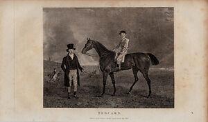 "original 1830 engraving titled ""  brocard "" jockey & owner"