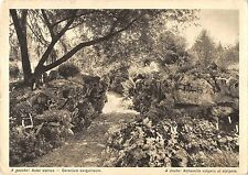 BT2414 Jardin Botanique de Genve      Switzerland