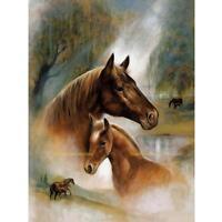 2 Pferd 5D Diamant Diamond DIY Kreuzstich Stickerei Malerei Bild Stickpackung