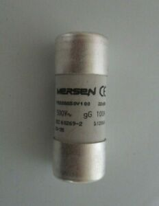 Mersen 22 x 58mm Cylindrical Fuses gG 100A 500VAC